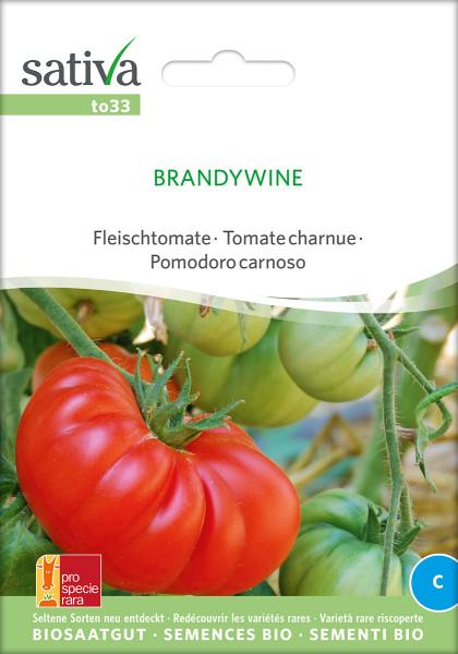 Tomate BRANDYWINE (demeter - Sortenrarität/PSR)
