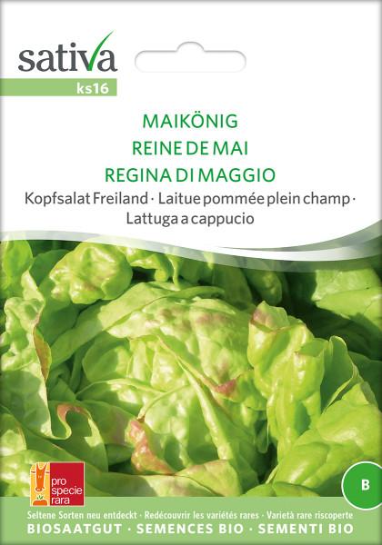 Kopfsalat MAIKÖNIG (demeter Biosaagut)