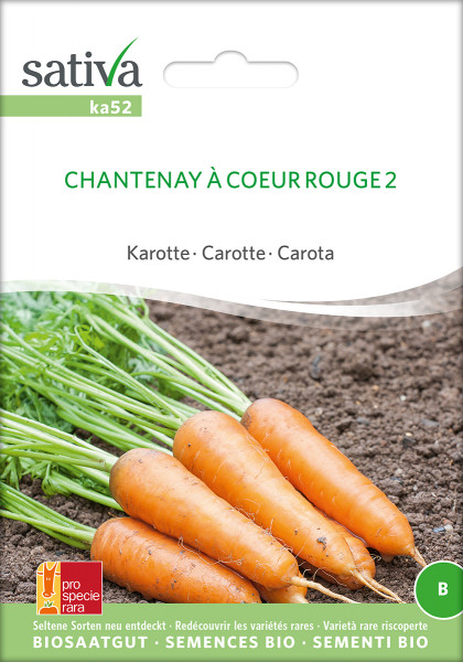 Karotte CHANTENAY À COEUR ROUGE 2 (Bio-Saatgut)