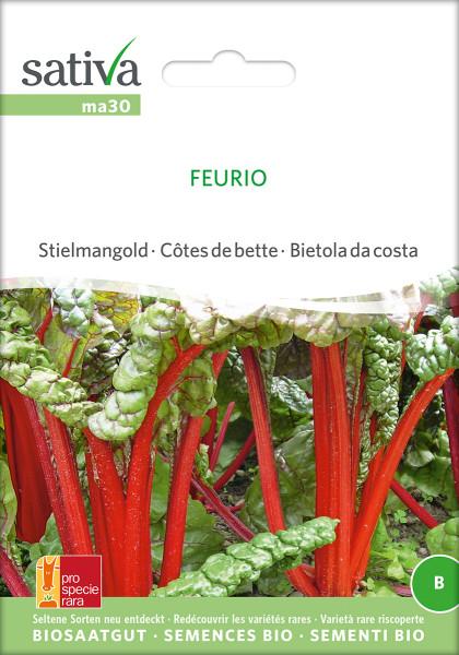Mangold 'FEURIO' (demeter Biosaagut /PSR)