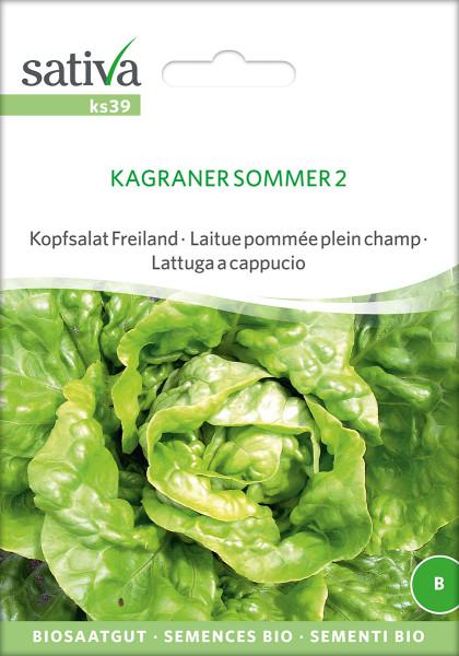 Kopfsalat 'KAGRANER SOMMER' (Bio-Saatgut)
