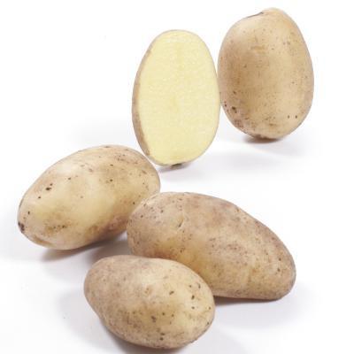 Pflanzkartoffel Princess [fk], 2,5 kg Netze - zertifizierte Saatkartoffeln (bio);