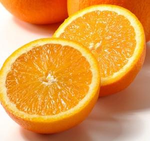 frisch geerntete Orangen aus Ribera g.U. (bio)