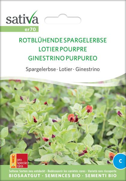 SPARGELERBSE rotblühend (demeter-Biosaatgut /PSR)