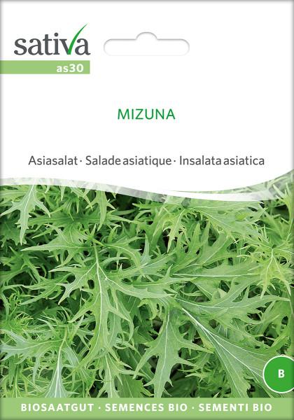 Asia Salat 'MIZUNA' (demeter-Biosaatgut)