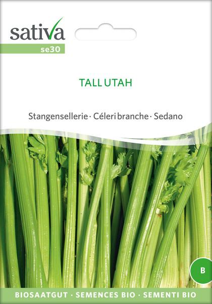 Stangensellerie TALL UTAH (demeter - Biosaatgut)
