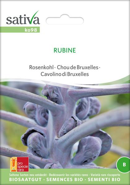 Rosenkohl RUBINE (demeter-Biosaatgut /PSR)