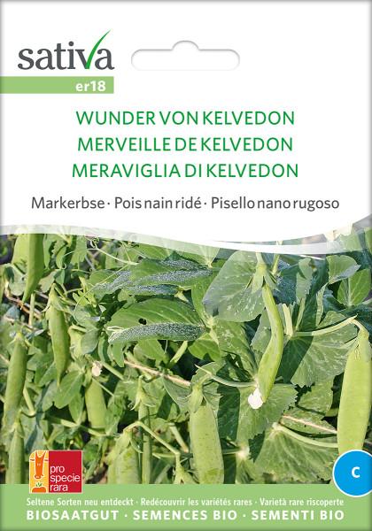 Markerbse 'WUNDER VON KELVEDON' (Bio-Saatgut/PSR)