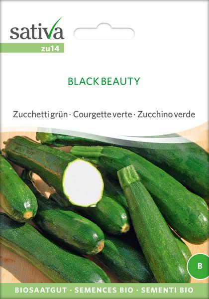 Zucchini BLACK BEAUTY (demeter-Biosaatgut /PSR)