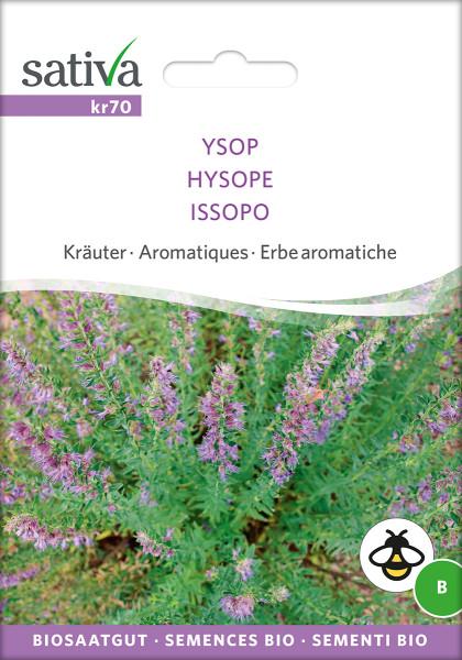 Ysop (demeter-Bio-Saatgut)