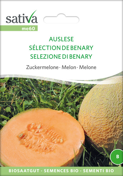 Zuckermelone BENARY'S AUSLESE (demeter - Saatgut)