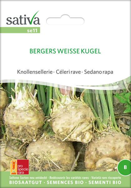 Sellerie BERGERS WEISSE KUGEL (Bio-Saatgut)
