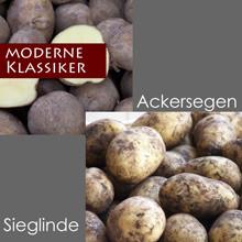 ALTE LIEBE - Ackersegen & Sieglinde