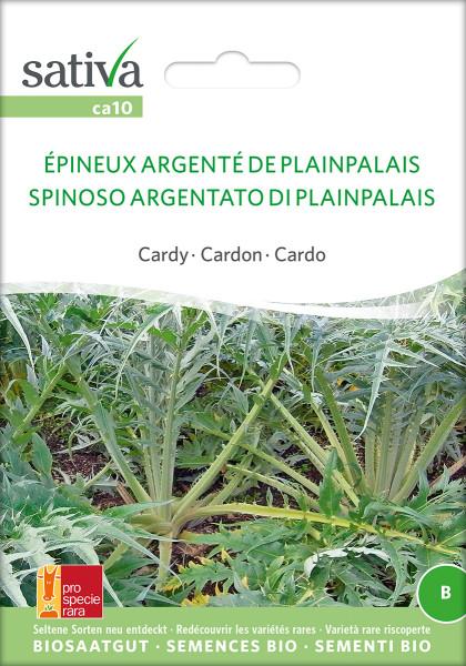 Cardy 'EPINEUX ARGENTE DE PLAINPALAIS' (demeter-Biosaatgut /PSR)