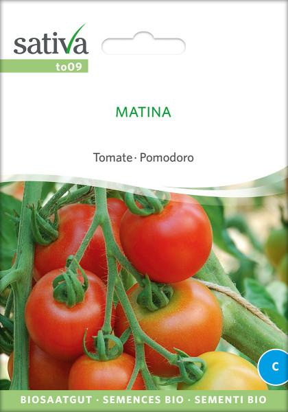 Tomate MATINA (demeter - Biosaatgut)