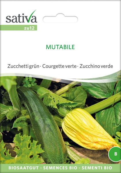 Zuchini, MUTABILE (Bio-Saagut)