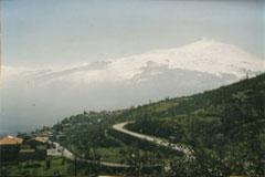 Demeter Kooperative Salamita auf Sizilien