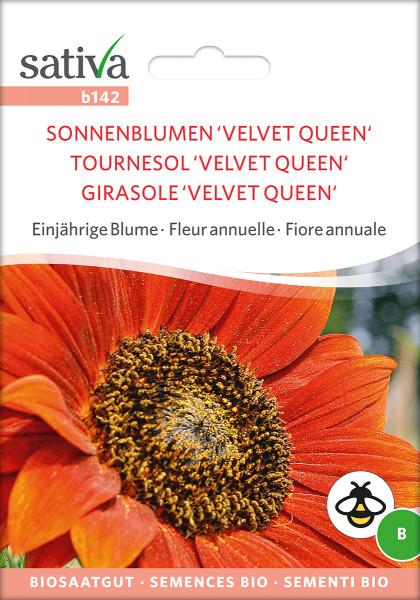 Sonnenblume VELVET QUEEN (mehrblütig) (demeter)