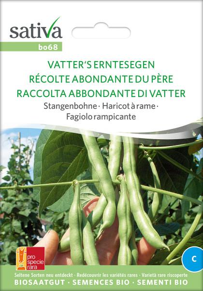 Stangenbohne VATTER'S ERNTESEGEN (Biosaatgut PSR)
