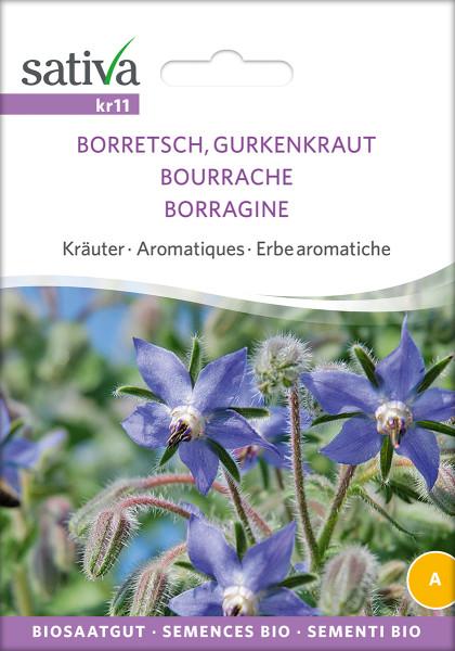 Borretsch, Gurkenkraut (demeter-Biosaatgut)