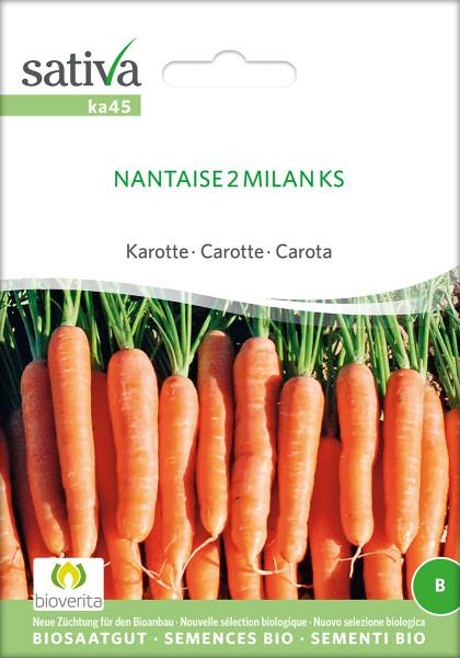 Möhre NANTAISE 'MILAN' (demeter-Biosaatgut)