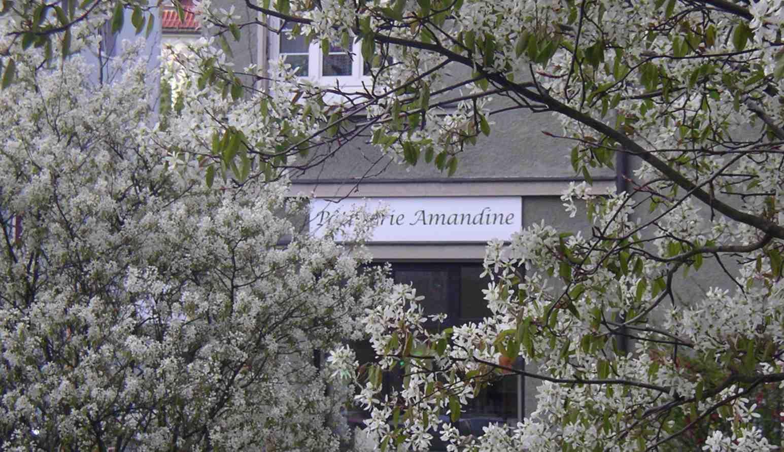 Patisserie Amandine
