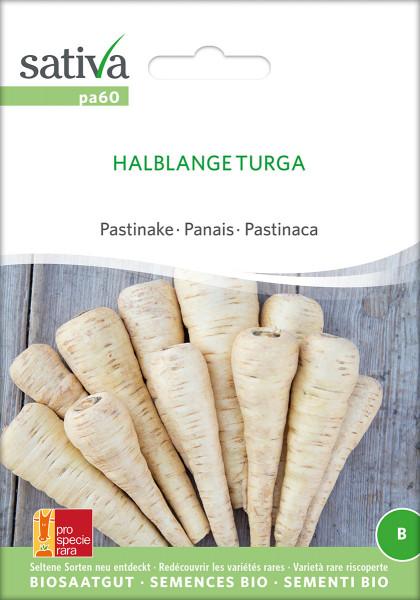 Pastinaken TURGA (demeter-Biosaatgut/PSR)