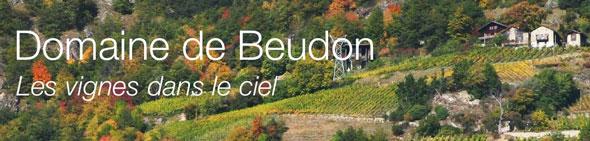 Domaine Beudon