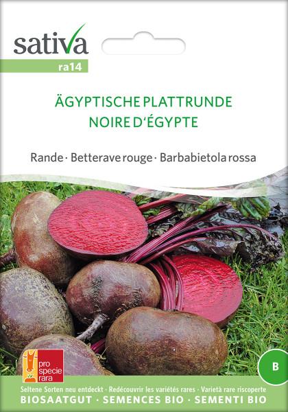 Rote Rüben ÄGYPTISCHE PLATTRUNDE (demeter - Biosaatgut)