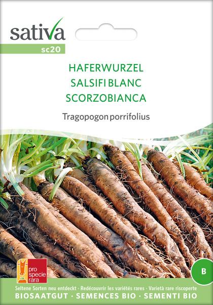 Haferwurzel (Salsifis blanc) (demeter-Biosaatgut /PSR)