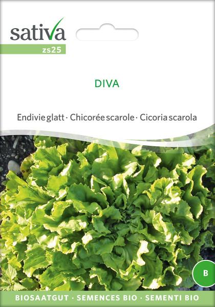 Endivie 'DIVA' (demeter Biosaagut)