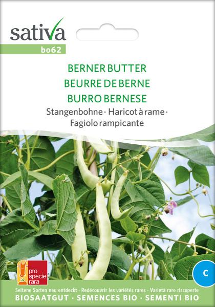 Stangenbohne BERNER BUTTER (demeter-Biosaatgut/ PSR)