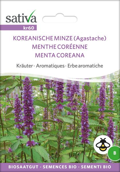 Koreanische Minze (Bio-Saatgut)