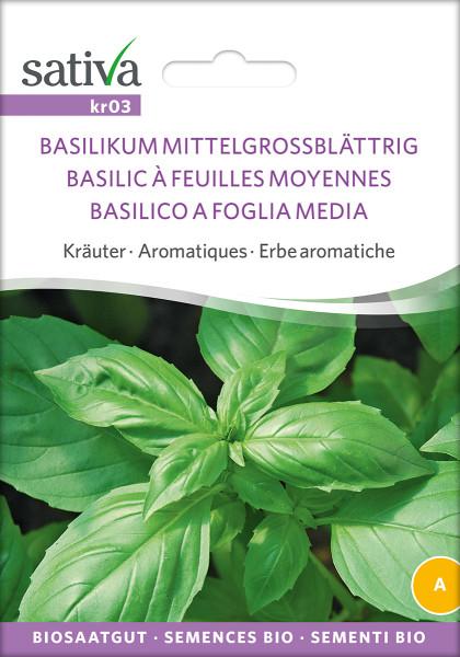 Basilikum Großblättrig, (demeter-Biosaatgut)