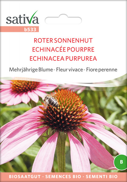Roter Sonnenhut (Echinacea purpurea) (Bio-Saatgut)