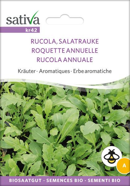 Rucola - Salatrauke einjährig (demeter Biosaagut)