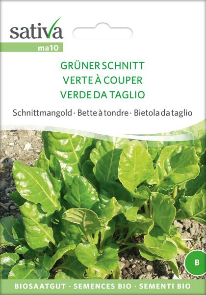 Mangold - SCHNITTMANGOLD - GRÜNER SCHNITT (Bio-Saatgut)