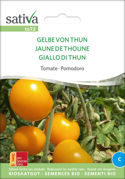 Tomate GELBE VON THUN (demeter-Raritätensaatgut/PSR)