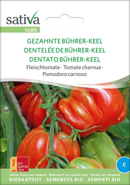 Tomate GEZAHNTE BÜHRER-KEEL (demeter-Raritätensaatgut/PSR)