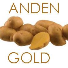 ANDENGOLD-GRENAILLE/Drillinge