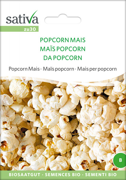 Popcorn Mais (demeter-Bio Saatgut)