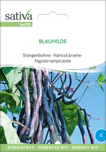 Stangenbohne BLAUHILDE (Biosaatgut)