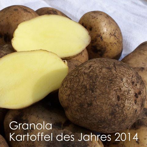 GRANOLA [vf] - die Kartoffel des Jahres 2014