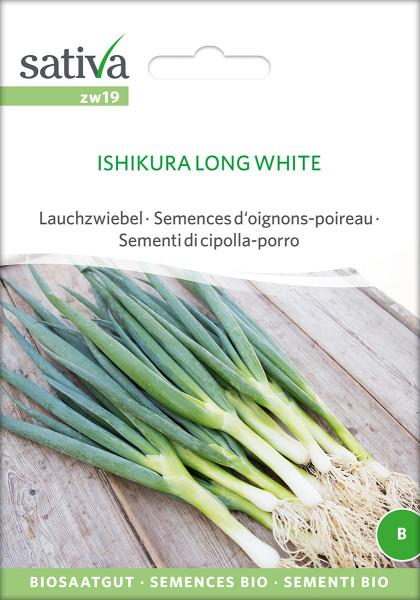 Lauchzwiebel - ISHIKURA LONG WHITE (Bio-Saatgut)