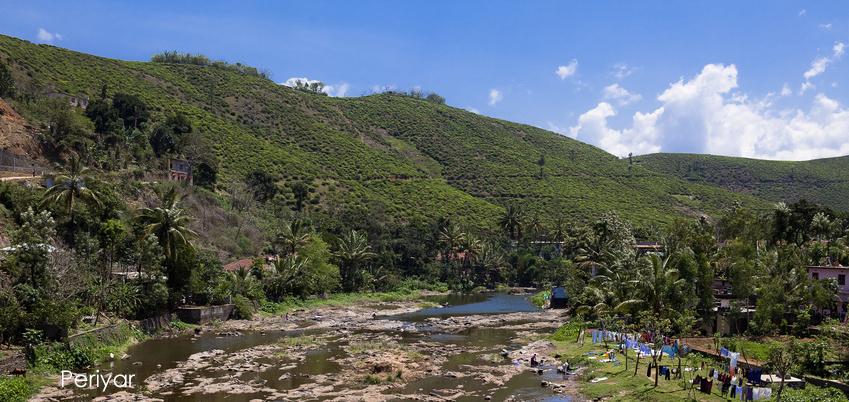 Natural Harvest - Periyar-Tigerreservat/Kerala