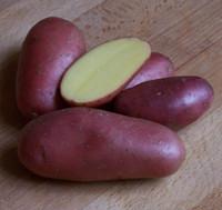 Cherie [f] · aus der Bretagne, Pommes Kartoffeln