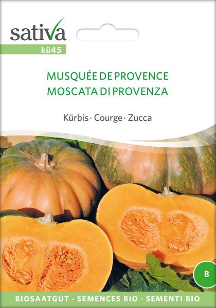 Kürbis - Muskatkürbis - 'MUSQUE DE PROVENCE' (bio)