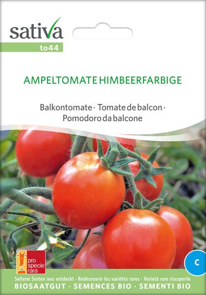 Ampeltomate HIMBEERFARBIGE (demeter-Biosaatgut psr)