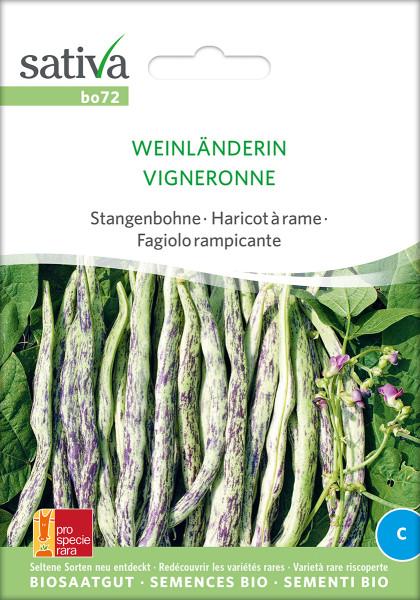 Stangenbohne WEINLÄNDERIN (Bio-Saatgut)