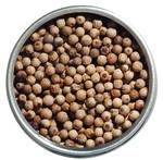 Weisser Urwaldpfeffer aus Kerala (bio)